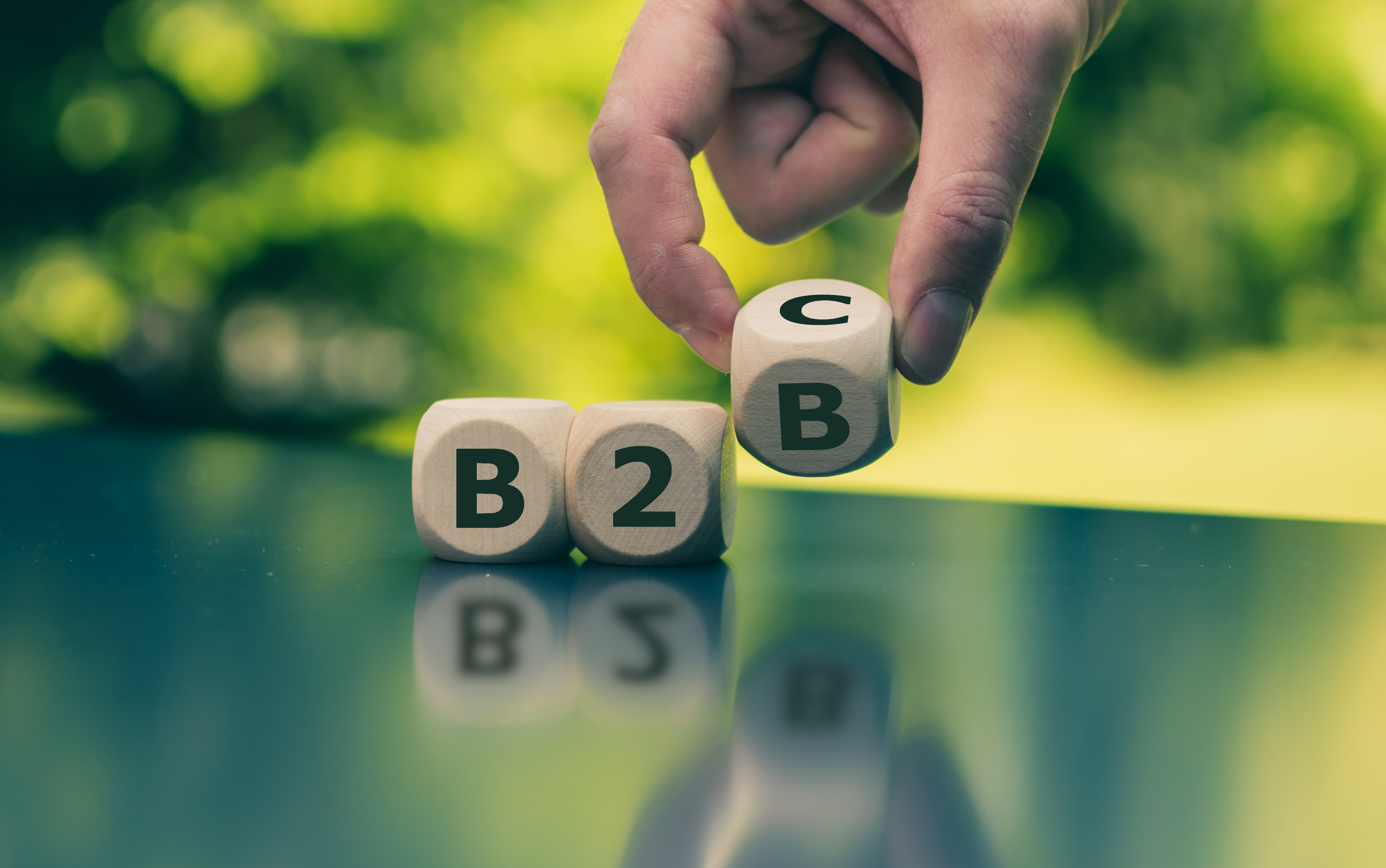 B2B Hybrid Commerce Solutions
