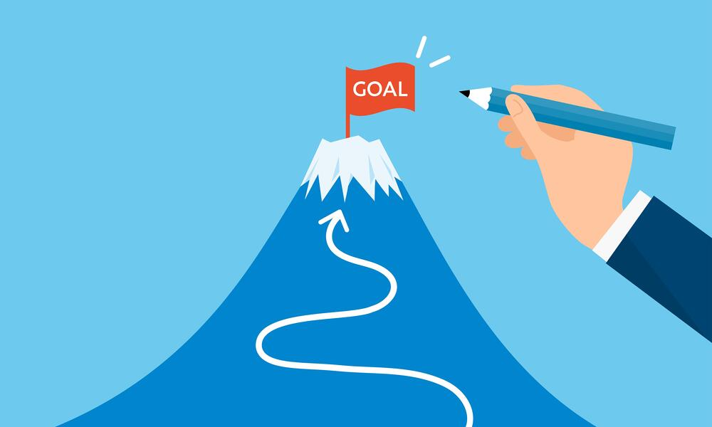 netsuite implementation project goals